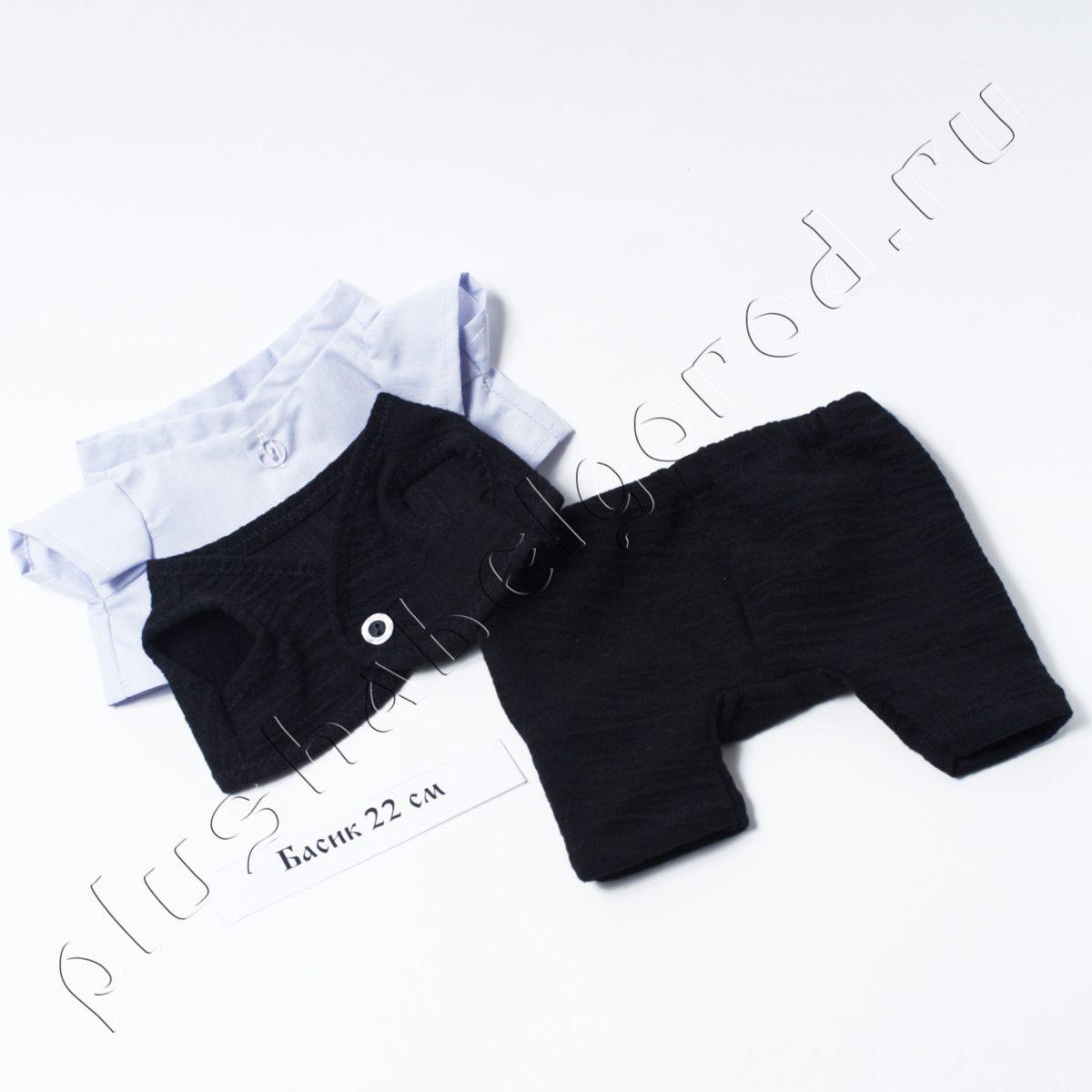 Брюки, рубашка и жилет (cv)