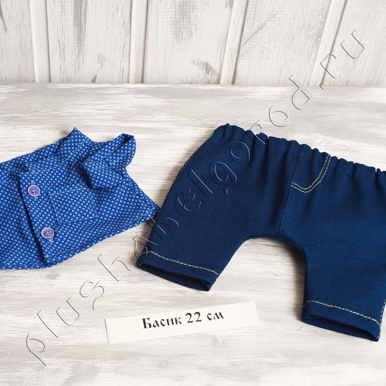 Джинсы и рубашка (22о)